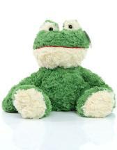 Frosch Torge